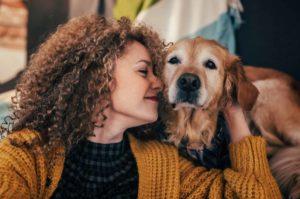 ibd-koiran-tulehduksellinen-suolistosairaus